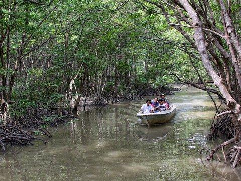 Can Gio Mangrove Forest - Monkey Island