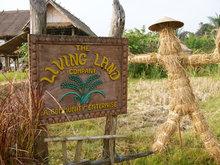 Living Land Company