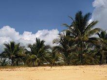 Lam Da Beach