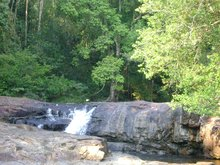 Virachey National Park