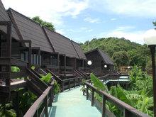 Arboreal Resort