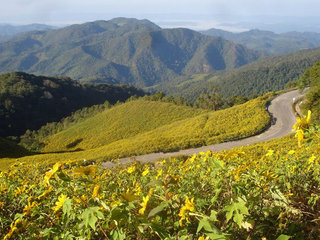 Mae Hong Son City and Temple Tour 1 day