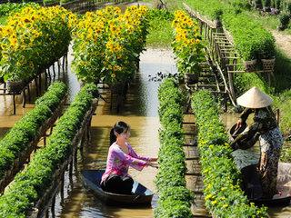 Siem Reap - Saigon
