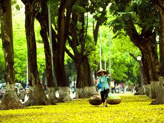 Hue - Hanoi (B)