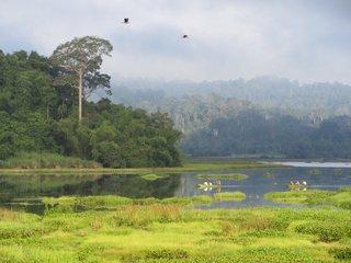Ho Chi Minh - Cat Tien National Park (B, L, D)