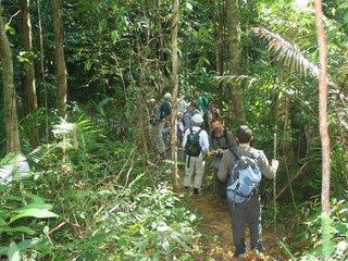 Bach Ma National Park (B, L, D)