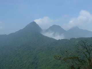 Tam Dao National Park (B)