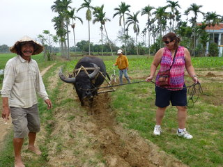 Farming in Tra Que Village (B, L)