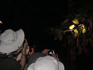 Park Headquarters – Safari Night (B, L, D)