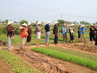 Tra Que Vegetable Farming Tour Half Day