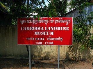 Banteay Srei - Landmine Museum - Tonle Sap Lake (B, L)