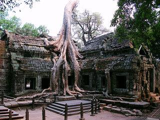 Siem Reap Arrival (L)