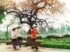 Family Travel to Vietnam - Cambodia