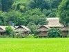 Vietnam Spectacular