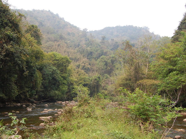 Nam Ha National Biodiversity Conservation Area